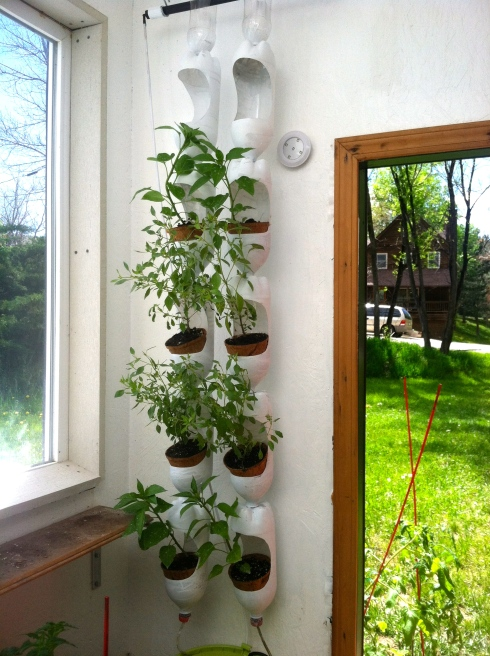 Growing Up How To Build A Vertical Garden With Recycled
